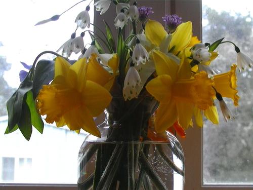 Vday_flowers_1